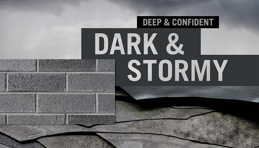 Dark and Stormy PDF Download